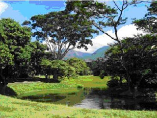 PARQUE (Parque del Este, Venezuela)
