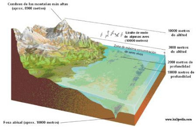 esquema de la biosfera
