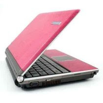 Pink Leather Laptop<br />