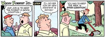 Hocus focus comic strip not deceived