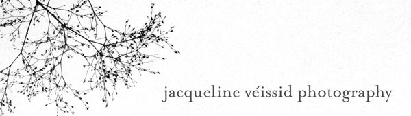 jacqueline veissid photography