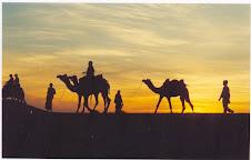 Desert Safari at Thar desert - Jaisalmer