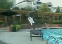 イスを壊してプールに飛び込む男性