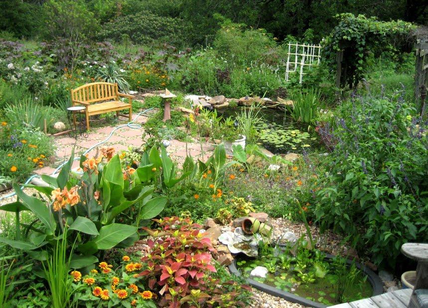 Julie Zickefoose On Blogspot An Oklahoma Eden