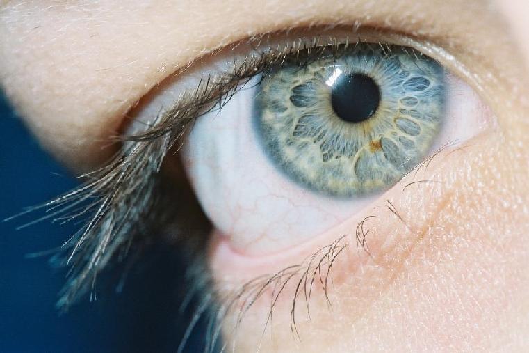 No Eyes Eye Lashes