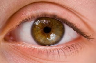 Eye Colors Browny Green Eyes