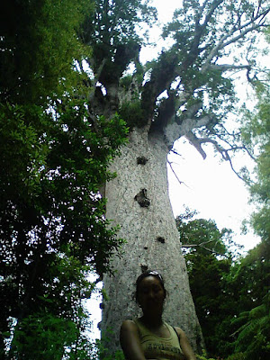 Mary at the Kauri Tree - New Zealand, this day last year