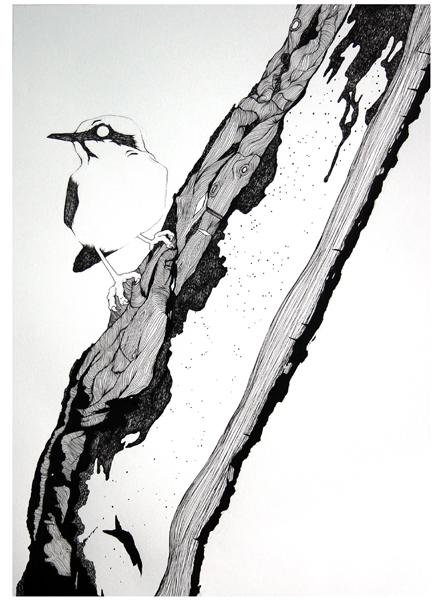 [tree+bark+04.jpg]