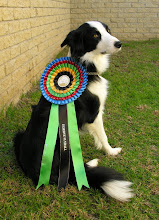 KUSA Nationals - Reserve Flyball