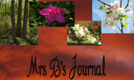 MrsB's Journal