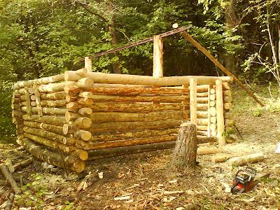 le forum de la cabane et des habitats alternatifs ma cabane budget limit rondins torchis. Black Bedroom Furniture Sets. Home Design Ideas