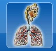 бронхиальная астма кто вылечился отзывы