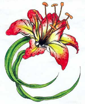 Images Lilly Flower Tattoos Design With Red Color