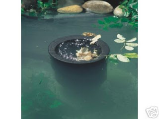 All about koi pond skimmers for Koi pond skimmer