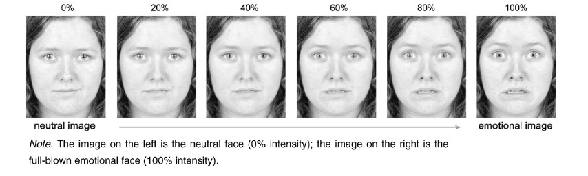 Opinion gender difference in facial expressions authoritative