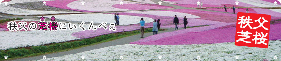 秩父の芝桜にいくんべぇ(宿泊と温泉と羊山公園)