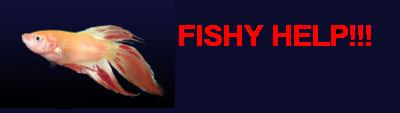 fishy help