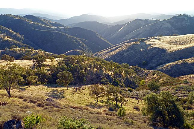 Sycamore Canyon Nature Center