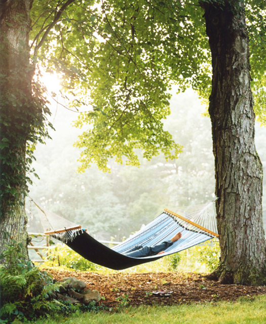 relaxing in a hammock; the good life