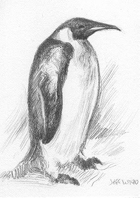 penguin ACEO sketch