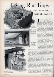 POPULAR SCIENCE MAGAZINE FEB 1936 ARTICLE LIVING RAT TRAPS PAGE 1