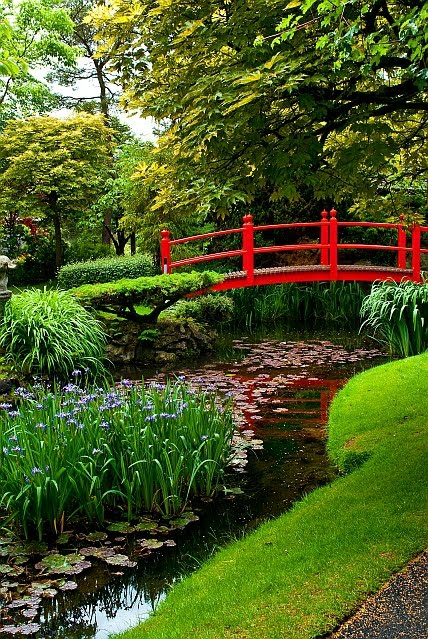 A Dubai Based Photographer/Artist: Japanese Gardens In Kildare