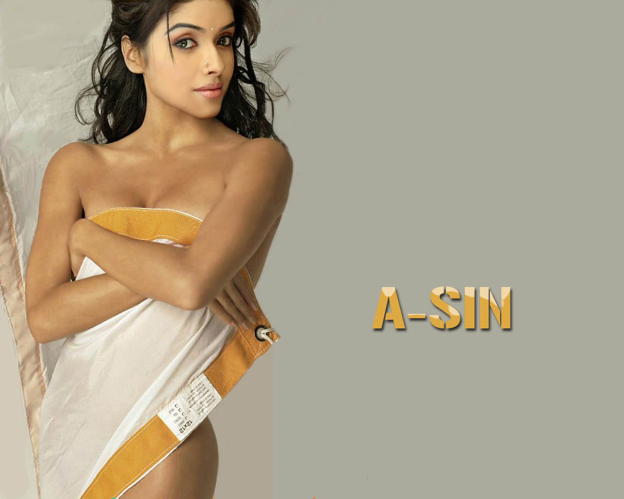 Tamil Actress Asin Hot Gallery - Photo Gallery