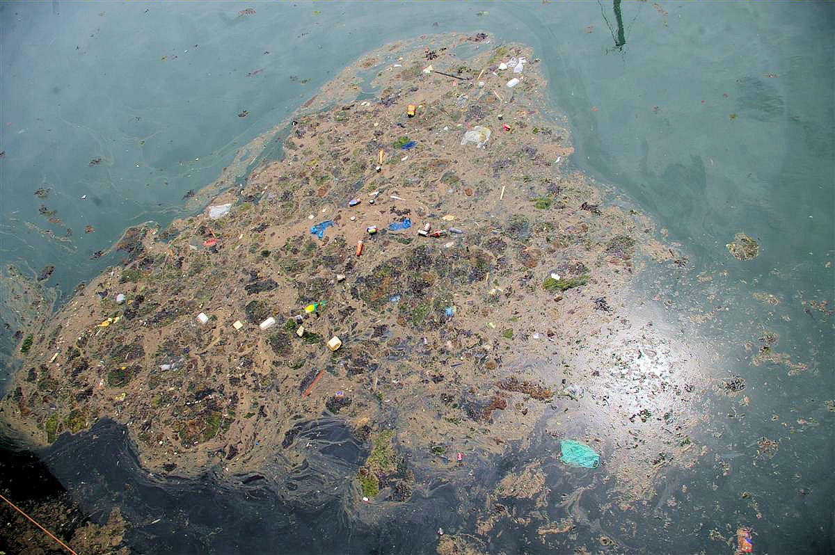 Thanetonline: Raw Sewage Running Into Ramsgate Harbour And