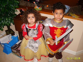 My Princess & Knight