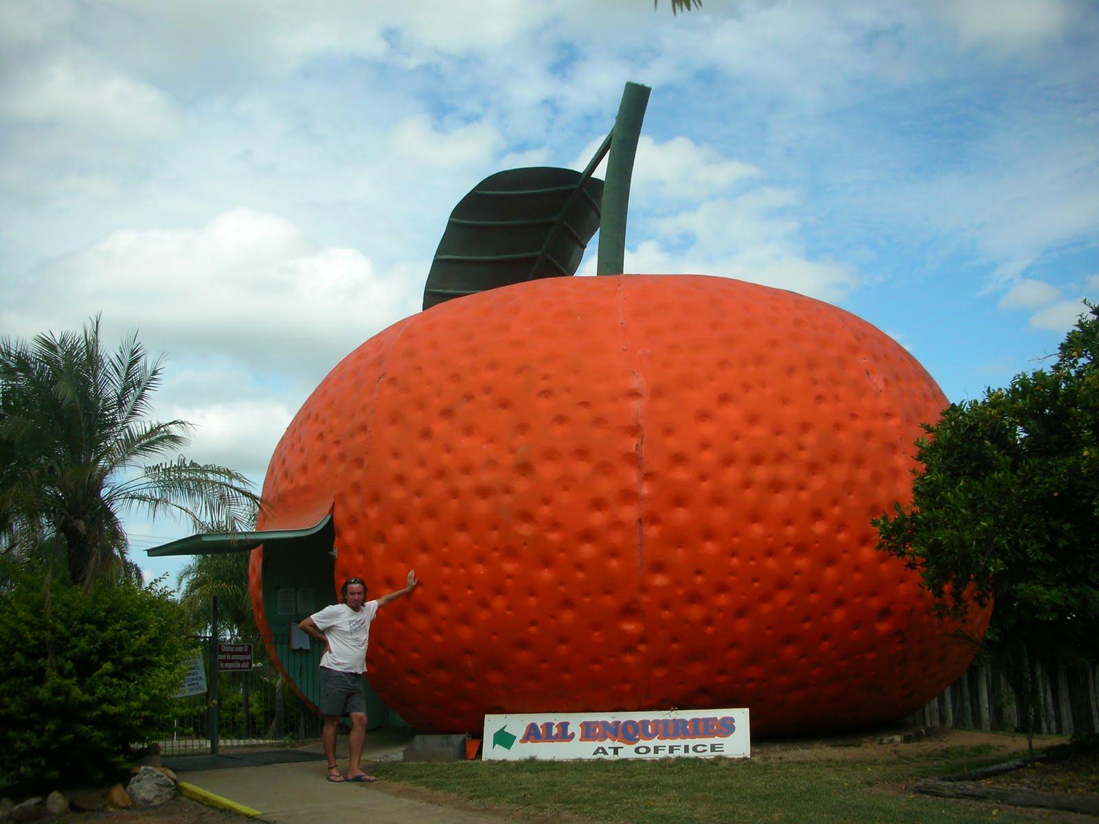 Big Mandarin de Mundubbera