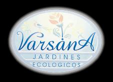 Varsana Noticias