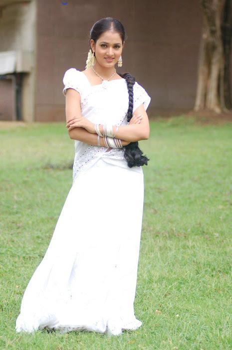 vidisha vawal in saree actress pics