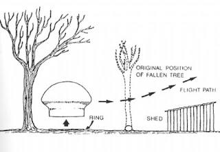 مخطط يظهر الطبق الطائر على هيئة نبات الفطر والأشجار التي ارتطم بها