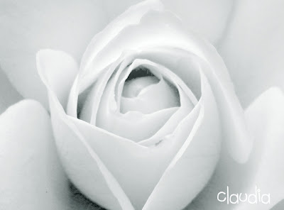 Claudia, la única Blanc1