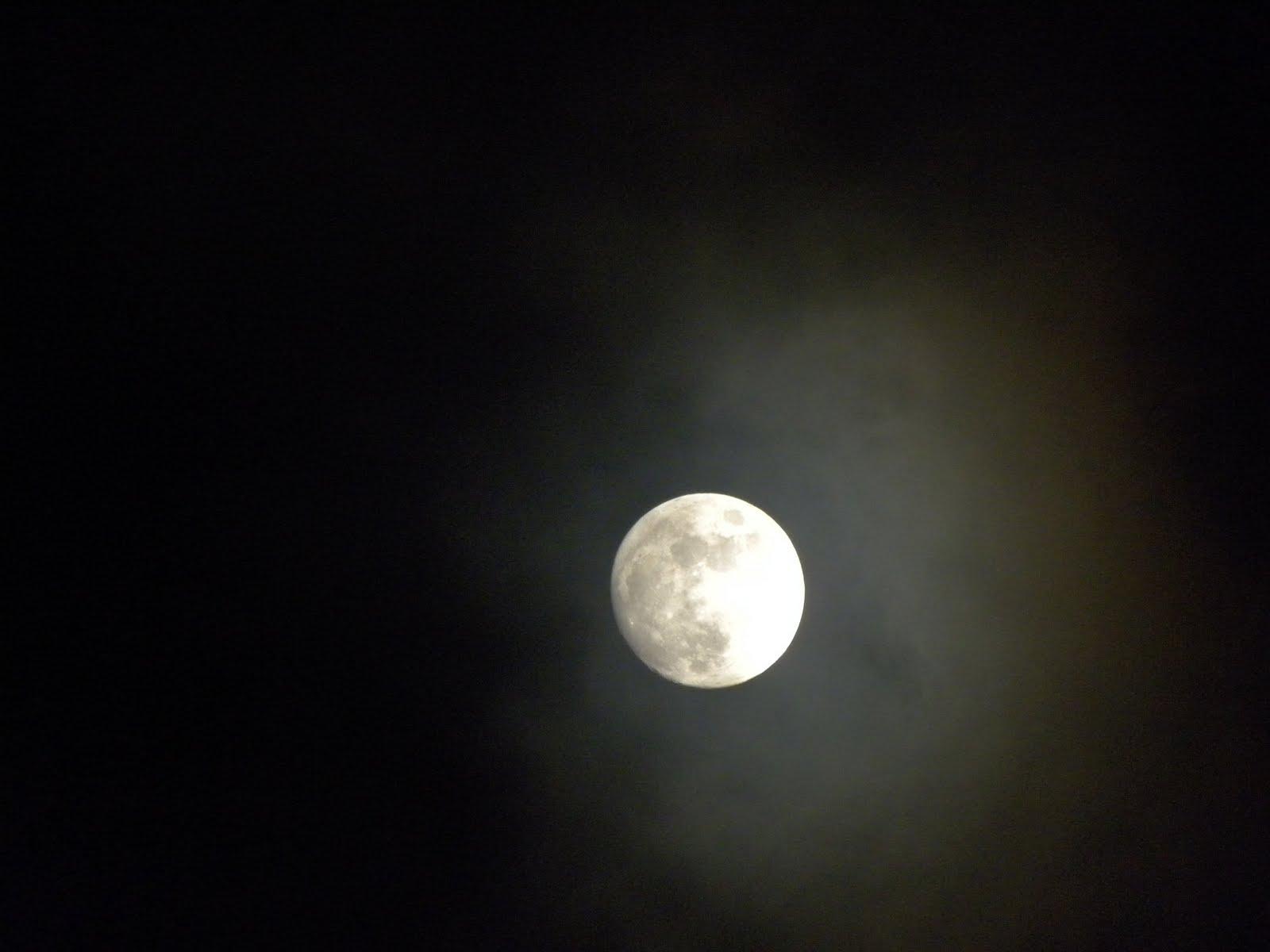 My Hawaiian Home: Wordless Wednesday: Moonbeams