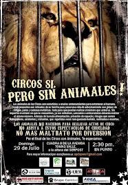 No al maltrato de animales en los circos!