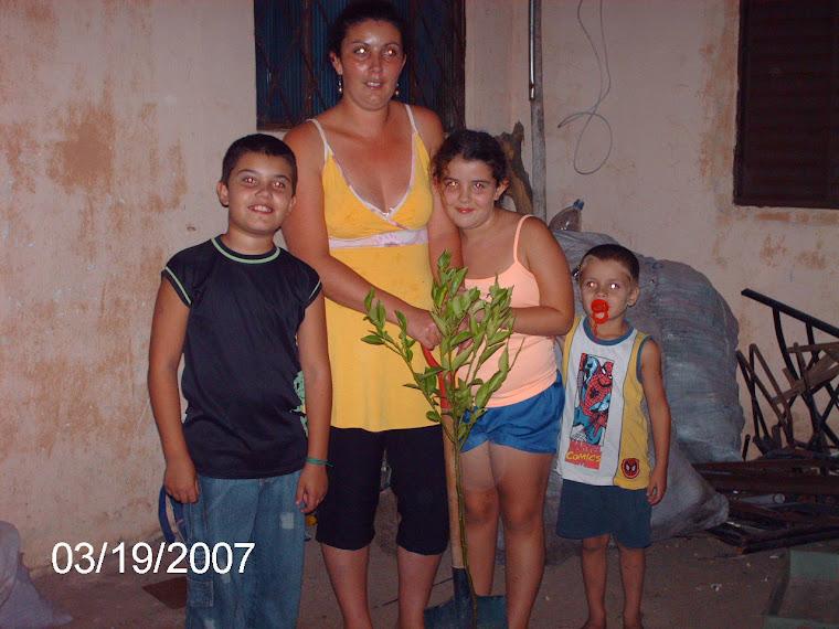 Uma laranjeira-do-céu para a família