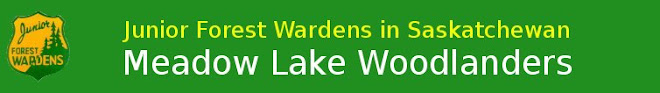 Meadow Lake Junior Forest Wardens
