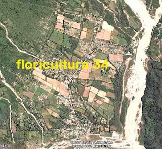 Floricultura 34 urbanizaci n y vivero en vaqueros - Viveros bermejo ...