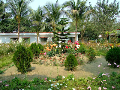 A small garden inside the resort