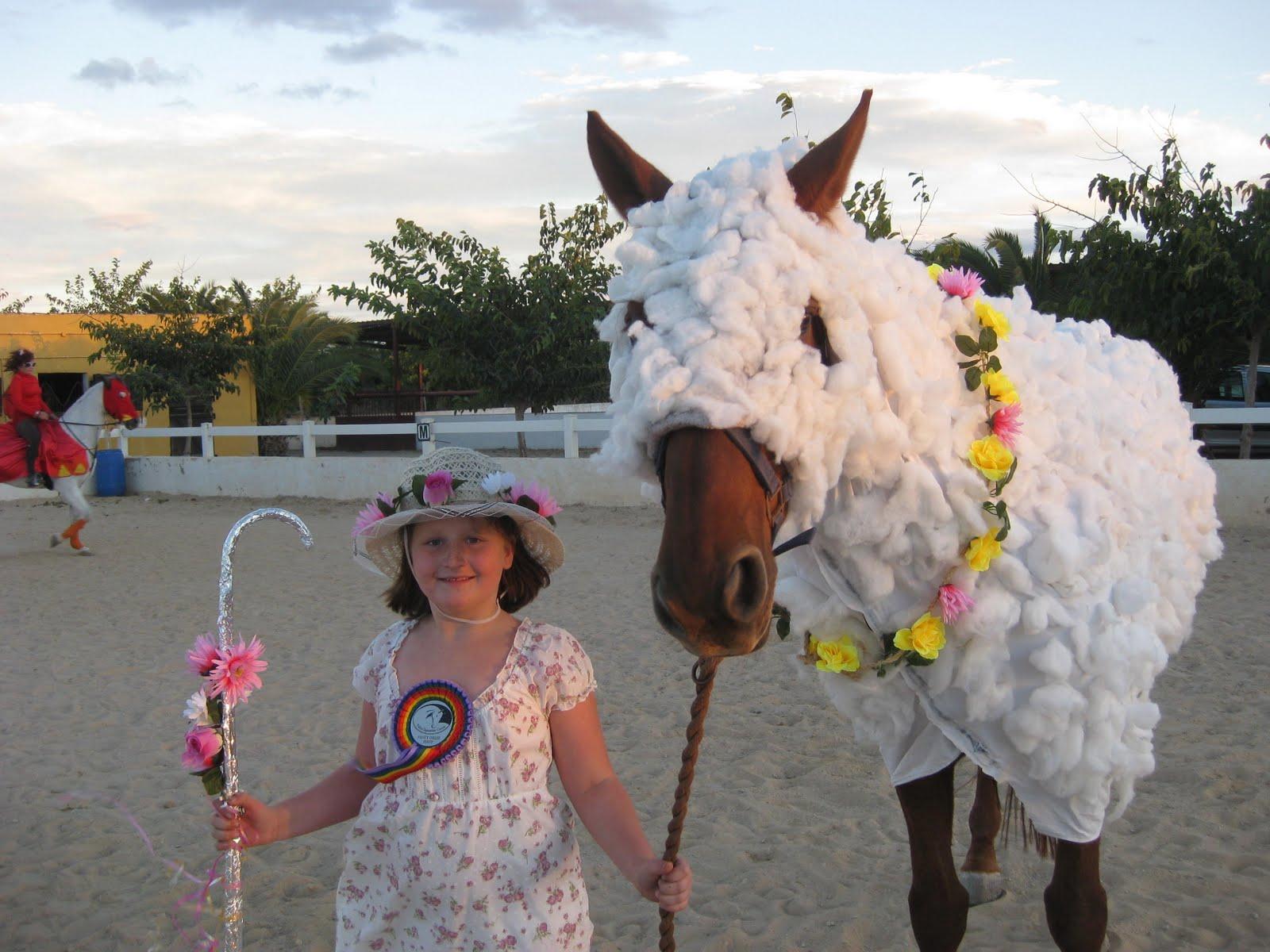 Chestnut Brown Horse Tabard Fancy Dress Costume For Kids |Horse Fancy Dress Costumes