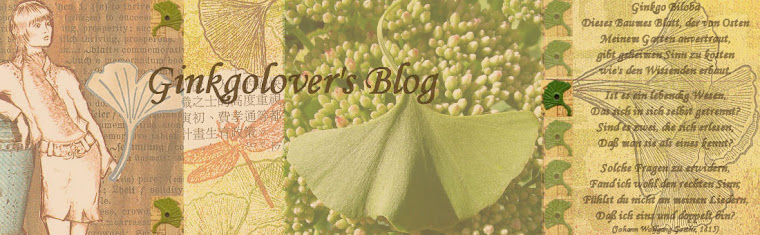 ginkgolover's blog - art and life