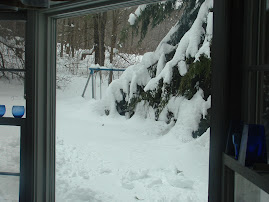 out the front window- check out the swingset to get an idea of how much snow there is!