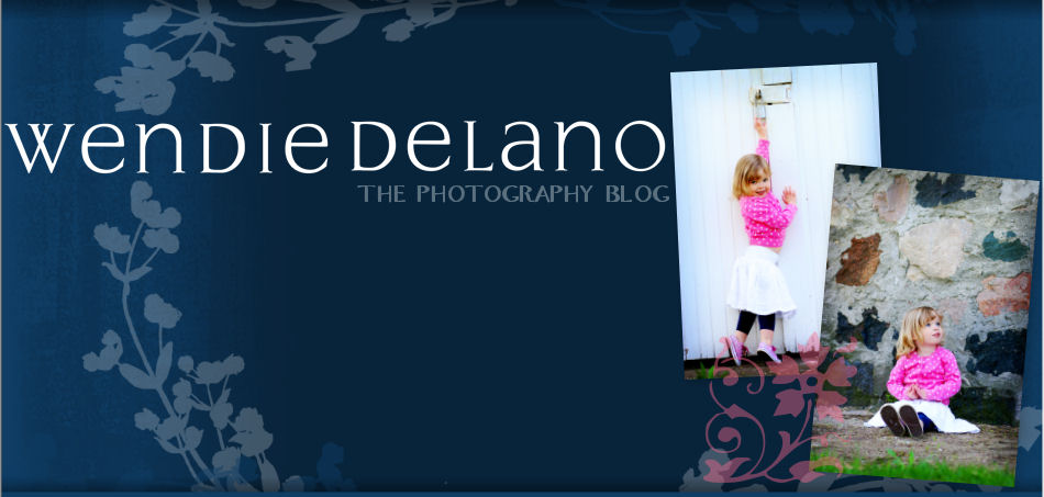 Wendie DeLano Photography Blog
