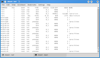 How to list Open Files and Network Connections   Linux Blog
