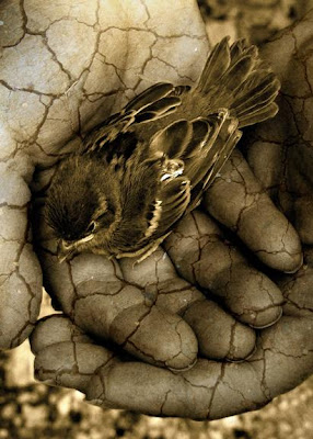 And what shall remain is this...
