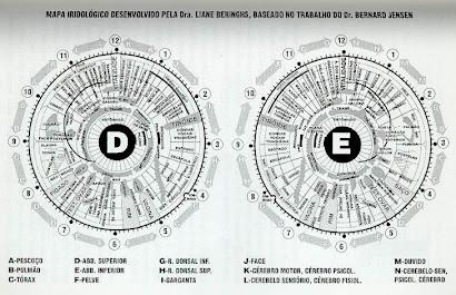 Mapa Iridológico