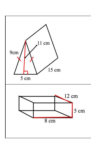 Sargent Park Math Zone: Surface Area Test Practice