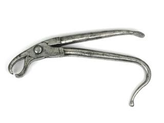 ادوات طب الاسنان dental-forceps-bruss