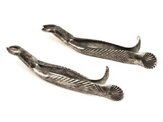 ادوات طب الاسنان dental-forceps-sherw